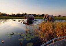 Area de Kruger